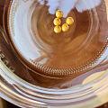 金豆豆攒起来