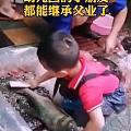4岁男孩杀鱼去鳞如此娴熟