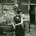 1939年京城的青楼女子。喜欢看老照片喜欢旗袍喜欢摄影的可以看两眼,还是挺美...