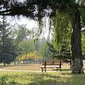 公园散步随拍