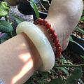 拍和田绝佳道具——阳光+绿植