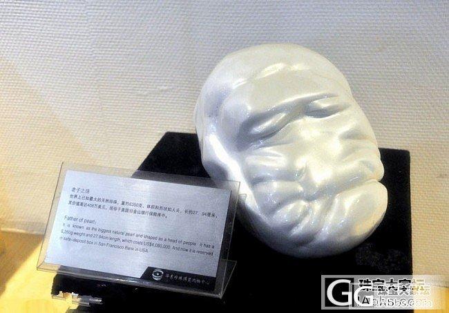 砗磲故事之老子珠_砗磲珍珠