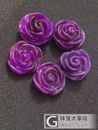 收了5朵皇家紫玫瑰_舒俱来