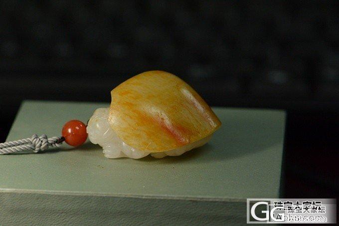 金皮龙龟_和田玉