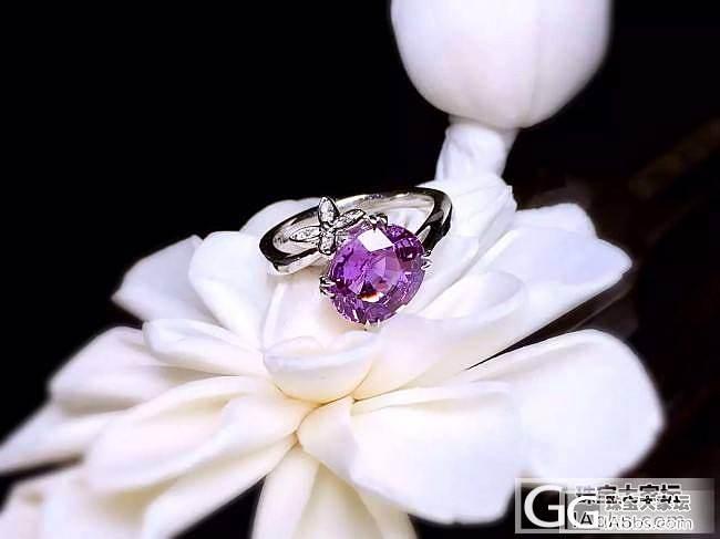 【RBG 定制欣赏】蝴蝶弄影舞翩跹,东来紫气俏嫣然。无烧紫色蓝宝石戒指,简约别致._上海皇家蓝彩宝