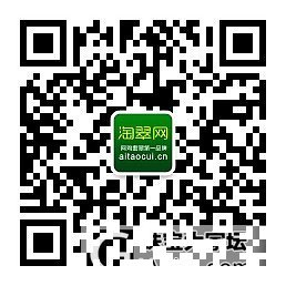 【淘翠新品】白底青触手生春扁管手镯_珠宝