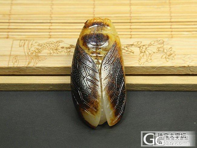 老熟度高的黑油皮籽料金蝉挂件一鸣惊人吊坠_和田玉