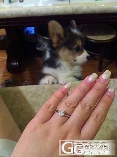 收物还图 我的婚戒 谢谢春哥_钻石小春钻石