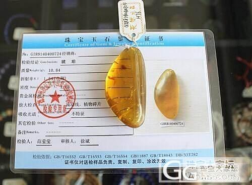 【收藏级别】0724缅甸天然琥珀 净水料金珀挂件10.84克 送证书_有机宝石