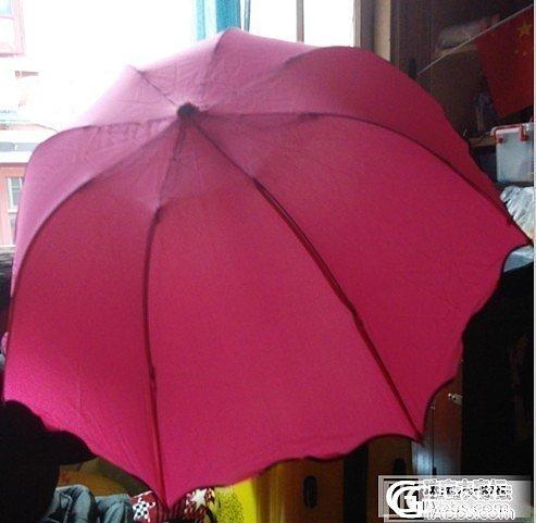 雨伞 太阳伞亏本出 牛皮腰带_品质生活