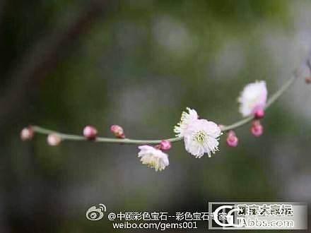 《暮光》……#中颐杭州超级美女VIP摄影作品欣赏#_中颐彩色宝石