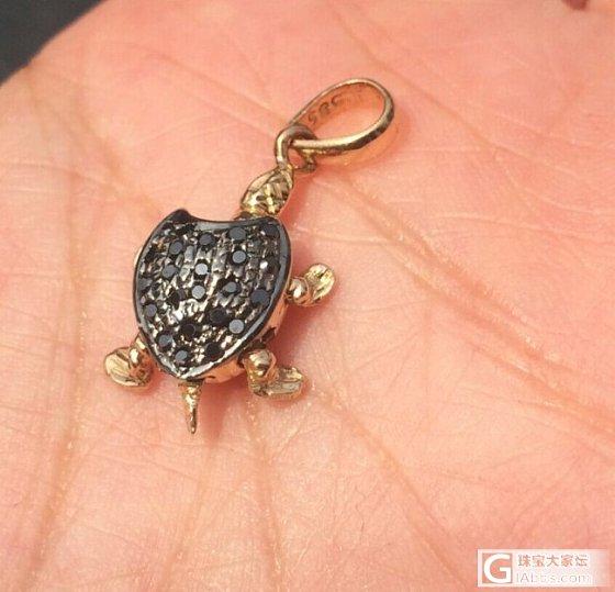 亏钱卖!印度带回来的小金龟,有发票,支持淘宝,真的亏钱出,绝不骗人。_金