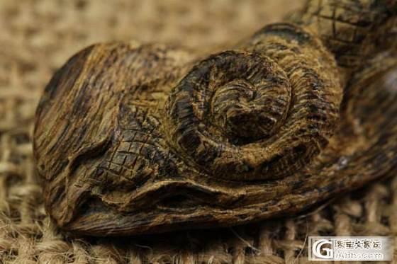 【稀饭香铺】天然北加里曼丹沉水沉香 蜗牛造型雕件挂坠_文玩