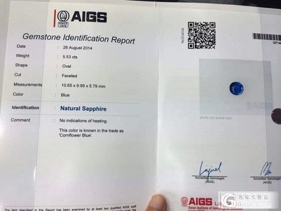 5.53CT无烧矢车菊,带AIGS证书,整个价格刚到中五,仅供欣赏……_蓝宝石