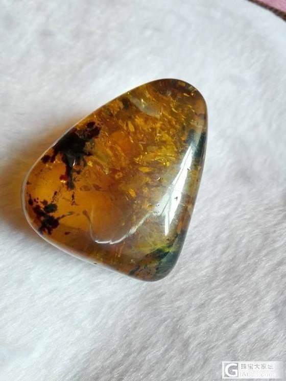 特色及虫珀18176352162_有机宝石