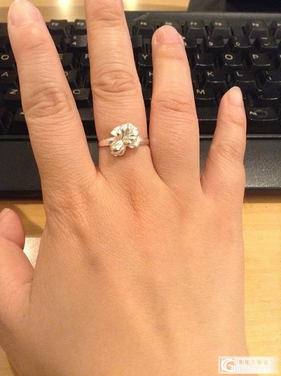 今天戴的,荷塘月色银镯+银白菜_手镯戒指银