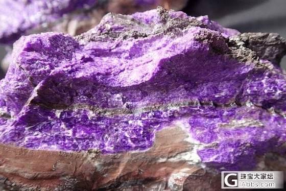这个算皇家紫吗?_舒俱来
