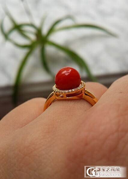 刚做好的珊瑚戒指,我是如此宠爱我的无名指_珊瑚