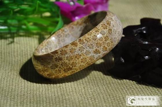 珊瑚化石(珊瑚玉)手镯_珊瑚玉