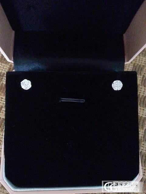 又降啦~白菜啦~凑米,【钻石小鸟】白18K钻石耳钉_钻石