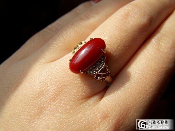 我的名字叫——阿卡牛血戒指_戒指珊瑚