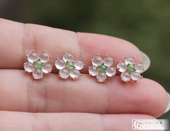 新批次的闪闪荧光翡翠玻璃种梅花耳钉,只售168元/对_翡翠