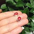 阿卡珊瑚耳钉,只要1999