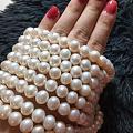 大白淡水珍珠项链200元
