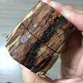 坛友的木头