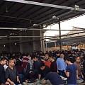 2017翡翠玉石方向标