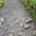 脚踏五彩祥云,徒步1.5小时,不管平原驰骋还是巅峰远眺,都比不过半山一眸。